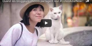 Video of Chinese blogger Wen Jing