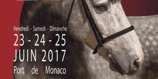 International Jumping of Monte-Carlo