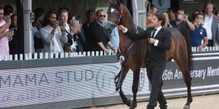 Menton I Arabian Horse Championship 2017